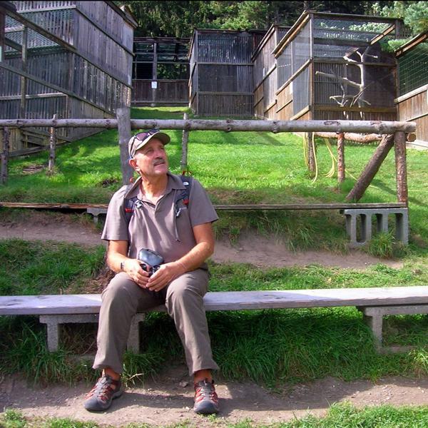 Appartement Tirol - Besuch im nahen Greifvogelpark