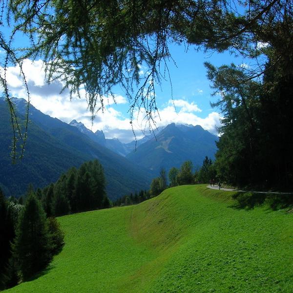 Appartement Tirol - Wanderweg in den Telfer Wiesen