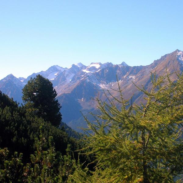 Appartement Tirol - Blick in die Stubaier Bergwelt