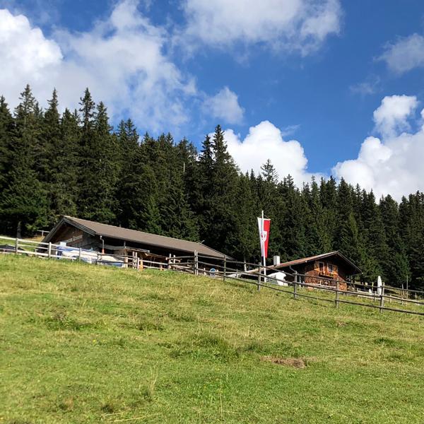 Appartement Tirol - Viele Almen und Hütten entlang der Wanderwege