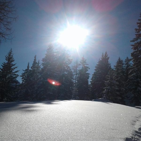 Appartement Stubaital - Stubai Tirol Winterwonderland